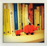 Elephants and books